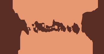Speciality Wood Veneer Panels Logo